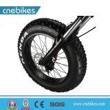 Preiswerter Ebike 20inch Minifalz-fetter Gummireifen-elektrisches Fahrrad