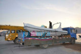 Liya 580 Boten van de Rib van China met Buitenboordmotoren