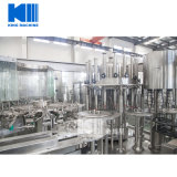 مصنع ماء [فيلّينغ مشن] مع محترفة فنيّة