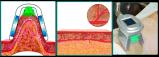 Equipo que adelgaza seguro de congelación gordo de Cryolipolysis de 4 manetas rápidamente