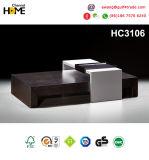 이탈리아 거실 현대 직물 소파 (HC8110)