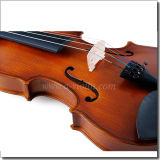 4/4 полного размера начинающих студентов Скрипка (VG001-HPM)