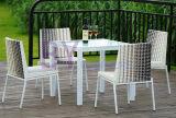 Lazer ao ar livre do hotel do jardim que janta a tabela do Rattan do PE e a mobília da cadeira