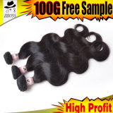 7Aマレーシアの毛の拡張の広州の製造者