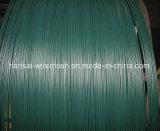 PVC 다른 색깔을%s 가진 입히는 철 철사