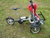 2017 neue Produkt-ausgezeichnete Qualitätspreiswerter elektrischer Baby-Spaziergänger mit Motor