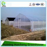 Chambres vertes en plastique de jardin commercial d'agriculture avec le système de refroidissement