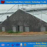 マルチスパンのトンネルのPEのプラスチックFilm&Nbsp; Hydroponic&Nbsp; システム農業のCommercial&Nbsp; 温室