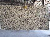 Quarzo di marmo Kalf-C005 della vena