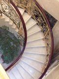 真鍮または銅カラー塗られた階段かバルコニーのアルミニウム柵