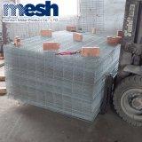 Rete fissa provvisoria saldata galvanizzata della rete metallica da vendere
