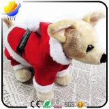 Le procès de Noël pour des animaux familiers chauffent des vêtements d'animal familier