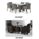 Muebles blancos del jardín del ocio de la rota de la fábrica de China con seis sillas