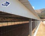 プレハブの自動鉄骨構造の養鶏場の建物の鶏の小屋の肉焼き器家デザイン