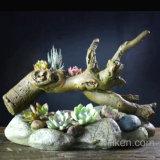 ハンドメイドの古典的な粗い陶器の植木鉢の樹脂の水気が多い植木鉢