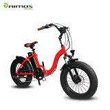Aimos 48V 750W elektrisches Fahrrad faltend