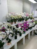 Flores artificiais da alta qualidade do lírio de tigre Gu-Jy929213710
