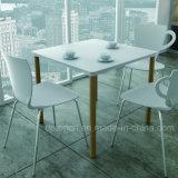 새로운 고명한 강철 대 플라스틱 다방 의자 (SP-UC388)