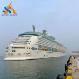 贅沢な中国の作られた乗客船