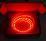 Doppelfarben 1.2m rotes &Ice blaues LED Streifen-Endstück-Licht