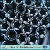 Rodamiento linear de la fuente de la fábrica de China con el corchete de acero (series del LM… GA)