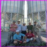 60ton ao silo da grão de 600 toneladas