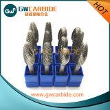 Bavures rotatoires de carbure solide de qualité