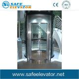 Klassischer Spiegel, der Wohnhöhenruder-Passagier-Aufzug-Maschine ätzt