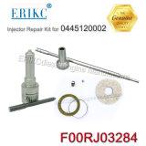 Erikc F00rj03284 KITS DE REPARAÇÃO NA RAMPA COMUM Dsla136P804 Bico F 00r J03 284 para Iveco Renault 0986435501 0445120002
