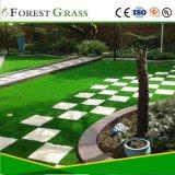 O uso de quintal e jardim relva artificial (VS)