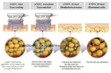 Medizinisches Cer anerkanntes Cryo fettes Frost-Gewicht-Verlust-Gerät