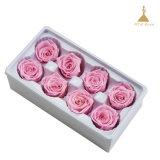 4~5cm 8 chefs préservé rose des fleurs pour anniversaire de mariage Cadeaux