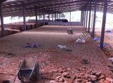 粘土の煉瓦生産ラインのためのトンネルキルン