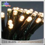 Im Freienweihnachtsdekoration-warme weiße feenhafte Lichter des Feiertags-LED