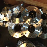 En1092-1 Flanges forjadas de aço inoxidável