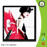 Magnetic Posters Frame Ultra Slim LED Light Box