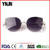OEM солнечных очков глаза кота Китая ясности покупкы большого части Ynjn (YJ-F83761)