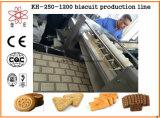 Kh600自動柔らかいビスケットの生産ライン機械