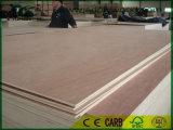 BB/CC Okoume cara de la madera de calidad la madera contrachapada con E0, E1 pegamento