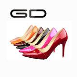 簡単な様式しかし良質の多彩な女性の靴