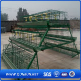 Aves de Corral de alta calidad de la jaula de la capa de huevo