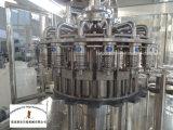 """Machine de remplissage de boisson de bouteille d'animal familier pour le projet """"clés en main"""""""