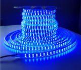 LEIDENE van de Fabriek 110V 220V 50m/Roll van Shenzhen Flexibele Waterdichte RGB Strook