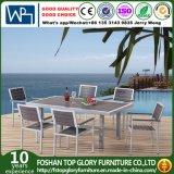 Mesa de jantar de jardim / pátio e cadeiras para mobiliário de exterior (TG-1010)