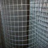 Acero inoxidable 304 Malla de alambre soldado (SS Malla de alambre soldado)