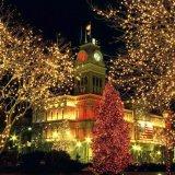 방수 옥외 크리스마스 훈장 LED 끈 빛
