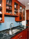Nordamerikanischer moderner Wohnungs-Küche-Schrank