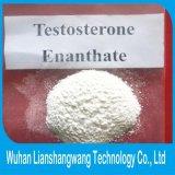 Poudre crue d'Enanthate de testostérone CAS 315-37-7 pour l'homme de muscle