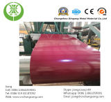 Покрасьте Coated катушку покрынную Alumzinc стальную - PPGL