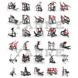 De plaat Geladen Apparatuur van de Geschiktheid van de Gymnastiek van de Sterkte van de Hamer van de Krul van het Been van ISO Zij